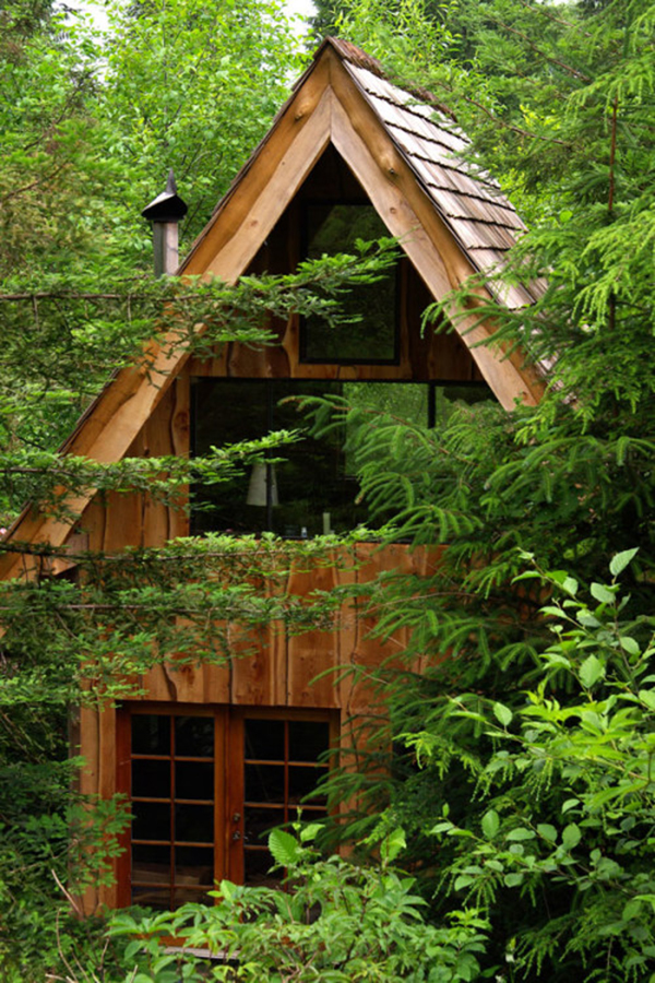 tiny-house-in-the-forest
